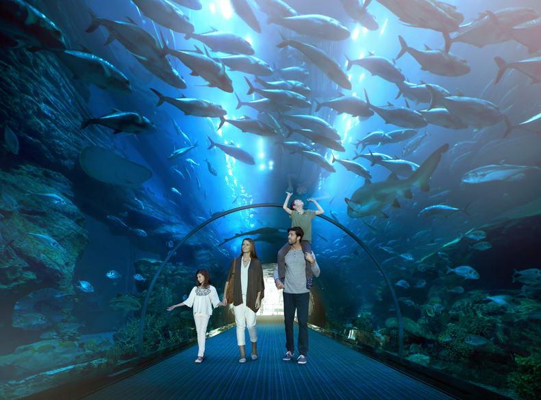 My Emirates Pass ile Bu Yaz Dubai'yi Daha Farklı Keşfedin...