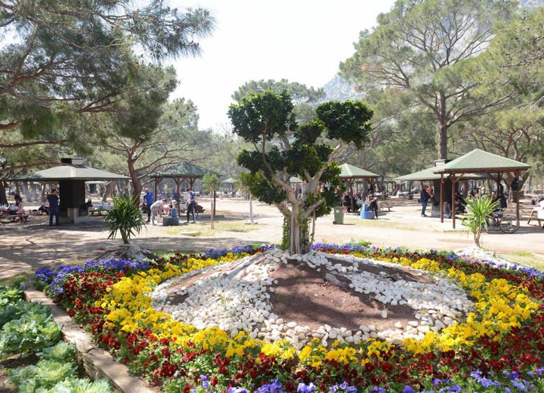 Antalya Sarısu ve Topçam'da mangal yasağı kalktı...