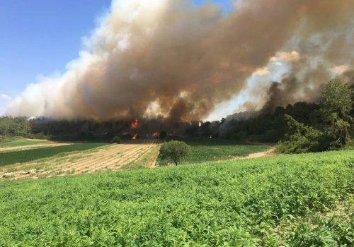 Manavgat ve Burdur Bucak'ta orman yangını...