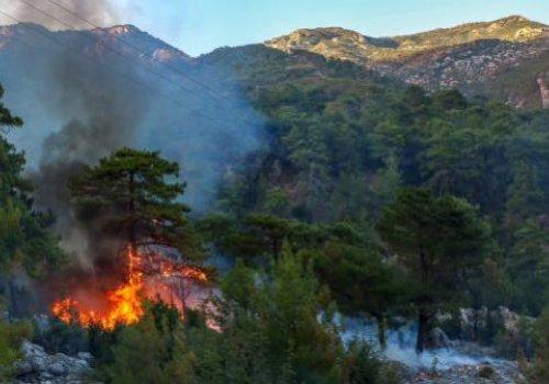 Manavgat'ta yangın bir mahallede büyüyor...