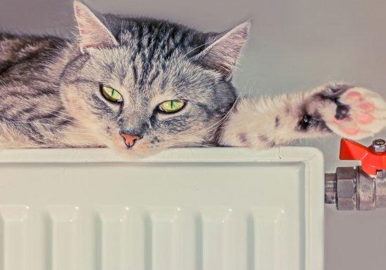 Вжилые дома Москвы начали подавать отопление...